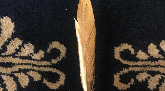 Phoenix Incarnate